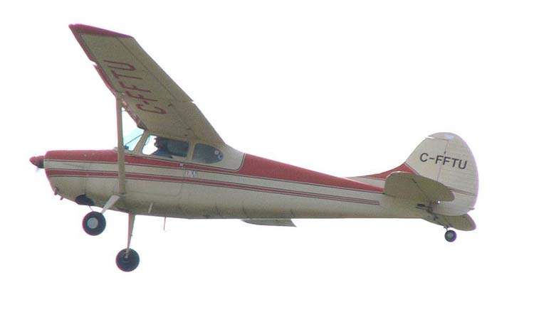 Cessna 170B - Cessna 170B in flight