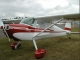 Cessna 140A - Cessna 140A with a single wing strut.